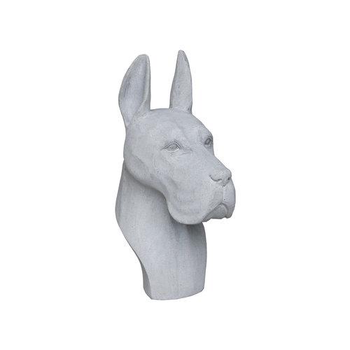 Dog head large gray
