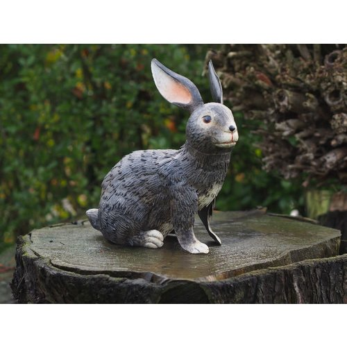 Kaninchen sitzt 31CM