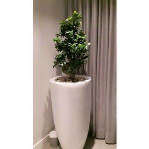 Vase high gloss white 90cm