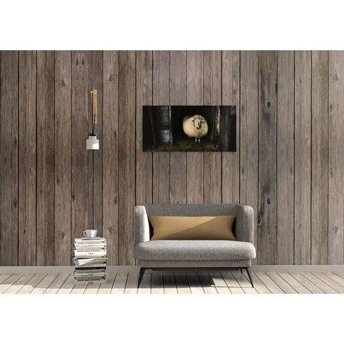 Wandkraft Malerei Birkenholz Schaf 98x48cm