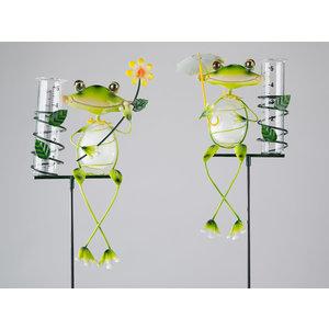 Rain gauge frog flower