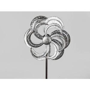 Garden plug flower