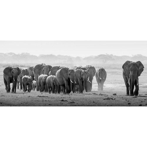 Glasmalerei 80x180 Elefantenherde