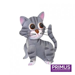 Matelen cat gray