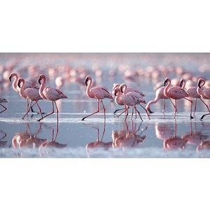 Glass painting Flamingos 75x150cm.