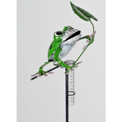 Regenmesser Froschblatt