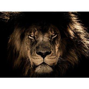 Glass painting Lion's head 2 120x80cm