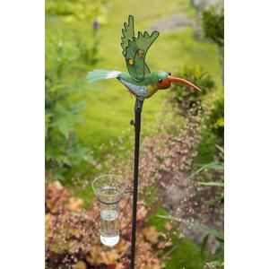 Tuinsteker regenmeter Kolibrie  AKTIE