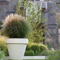 Plantenpotten inspiratie ideeën voor thuis, kantoor of in een mooie tuin