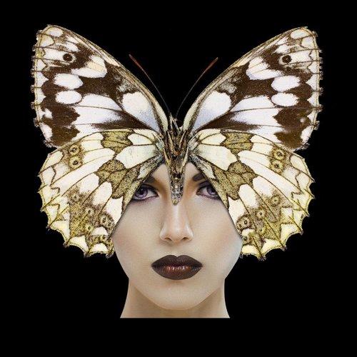 Glasschilderij Butterfly woman
