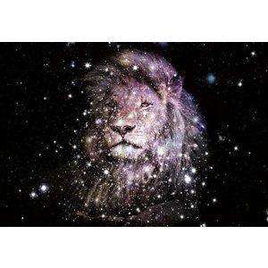 Glasschilderij Lightning lion