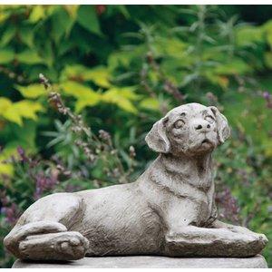 Dragonstone Gartenbild eines mittelgroßen Labrador-Hundes