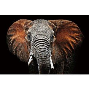 Glass painting 120x80 Elephant