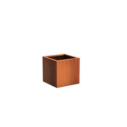 Adezz Producten Plantenbak Cortenstaal Vierkant Andes 60x60x60cm