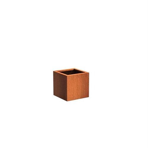 Adezz Producten Plantenbak Cortenstaal Vierkant Andes 50x50x50cm