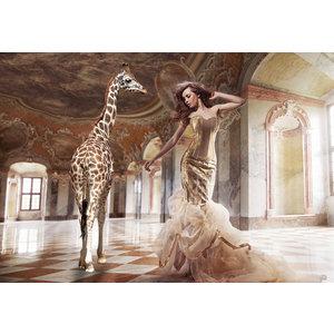 Glasschilderij Giraffe