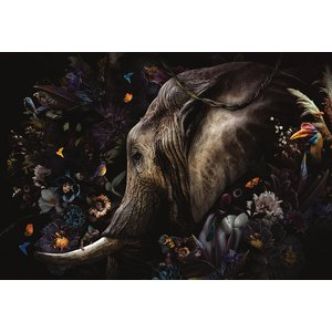 Glasschilderij Fantasie olifant
