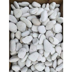 Ornamental boulders flat white 3-5 cm.