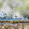 TOP 5 UNIEKE modellen waterelementen voor tuin