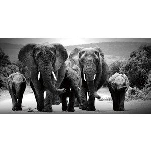Glass painting Herd of Elephants black/white 80x160cm