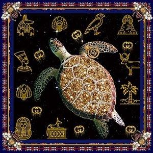 Glasschilderij Schildpad 100x100cm.