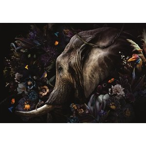 Glasschilderij Fantasie olifant 110x160cm.