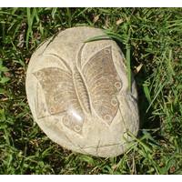 Urn Vlinder op steen 15cm