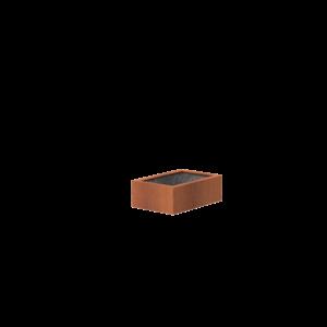 Adezz Producten Adezz Vijver Cortenstaal Rechthoek 120x80x40cm
