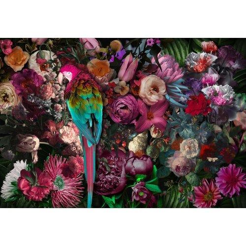 Glasschilderij Papegaai in bloemen 80x120cm.