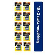 Toshiba 20 Stuks Toshiba LR20GCP BP-2CN D Type Wegwerpbatterij EAN 4904530592706