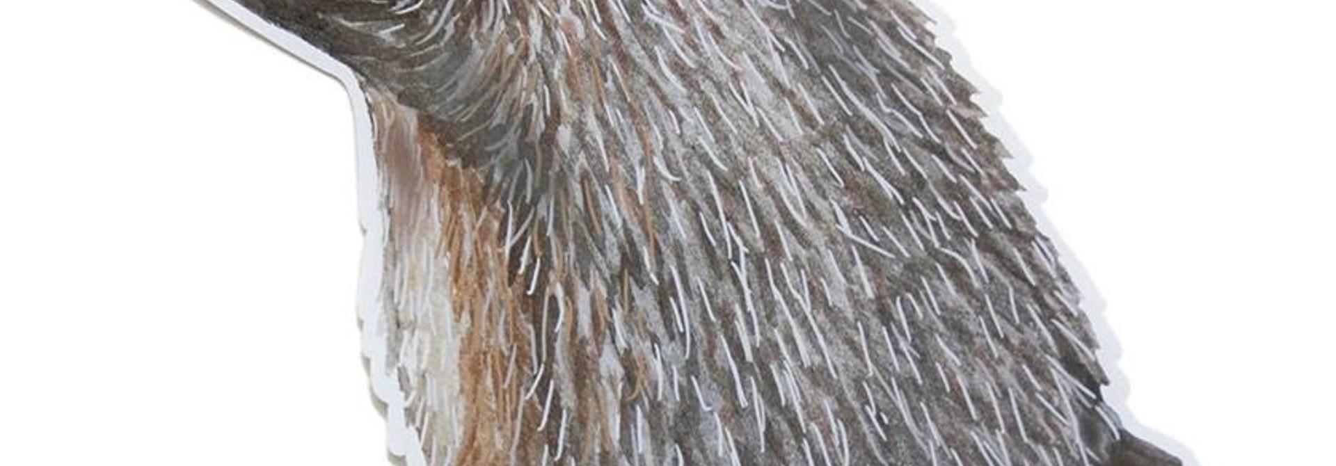 Kleiner Igel Wandsticker