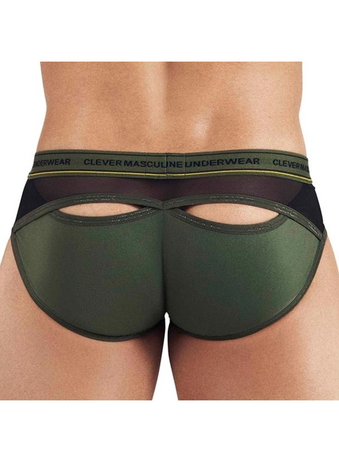 Clever Intuition brief