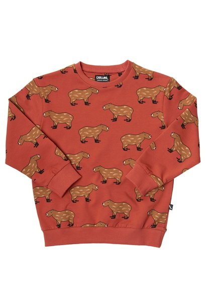 Sweater beren print