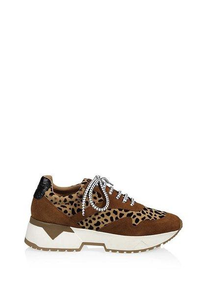 Sneaker congnac/cheeta