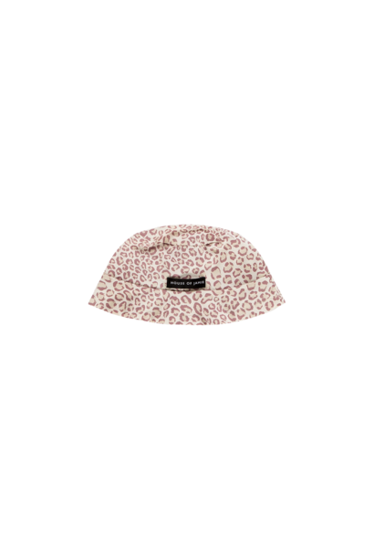 Summer hat orchid leopard