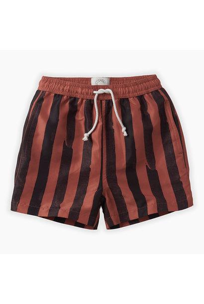 Swim shorts 'painted stripe'