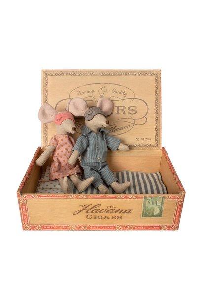 Mama en papa muizen in sigaren doos