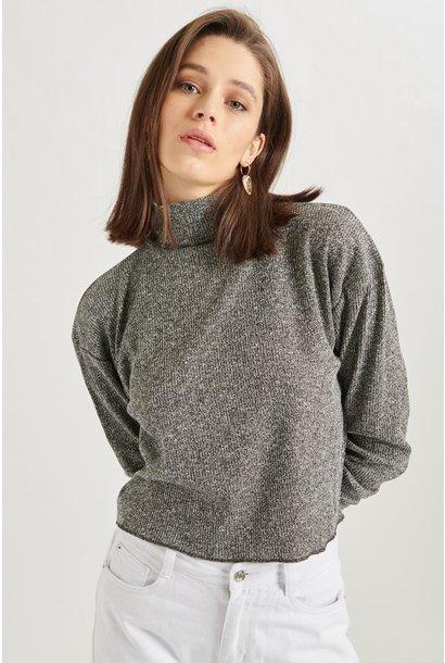 Pullover - Grijze Col