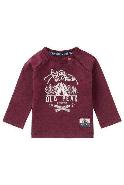 T-shirt LS elliot, dusty red