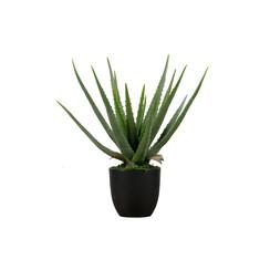 Aloë Vera Kunstplant Groen 46cm