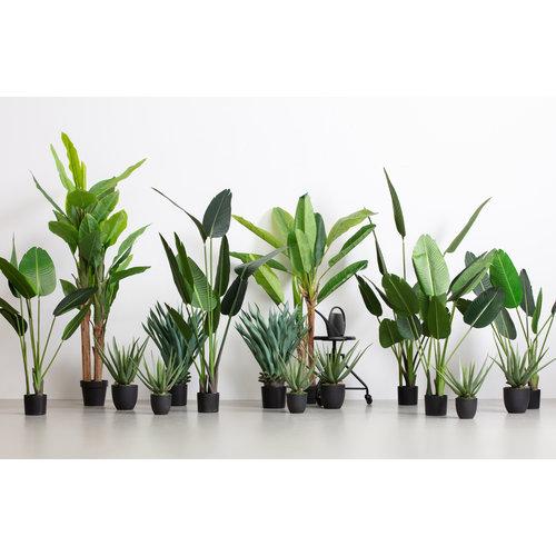 WOOOD Aloë Vera Kunstplant Groen 46cm
