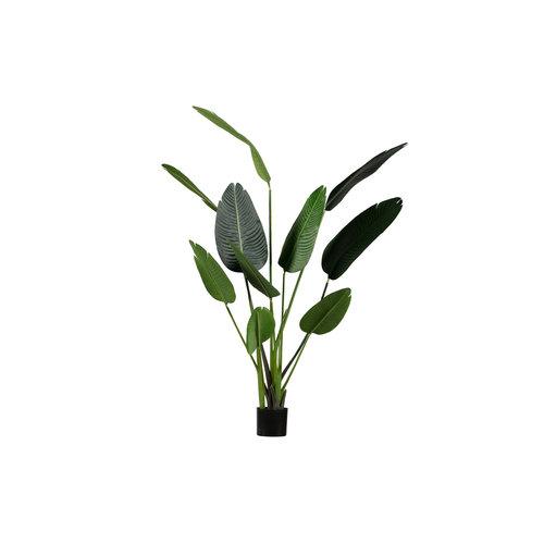 WOOOD Strelitzia Kunstplant Groen 164cm