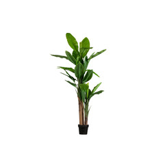 Bananenplant Kunstplant Groen 195cm