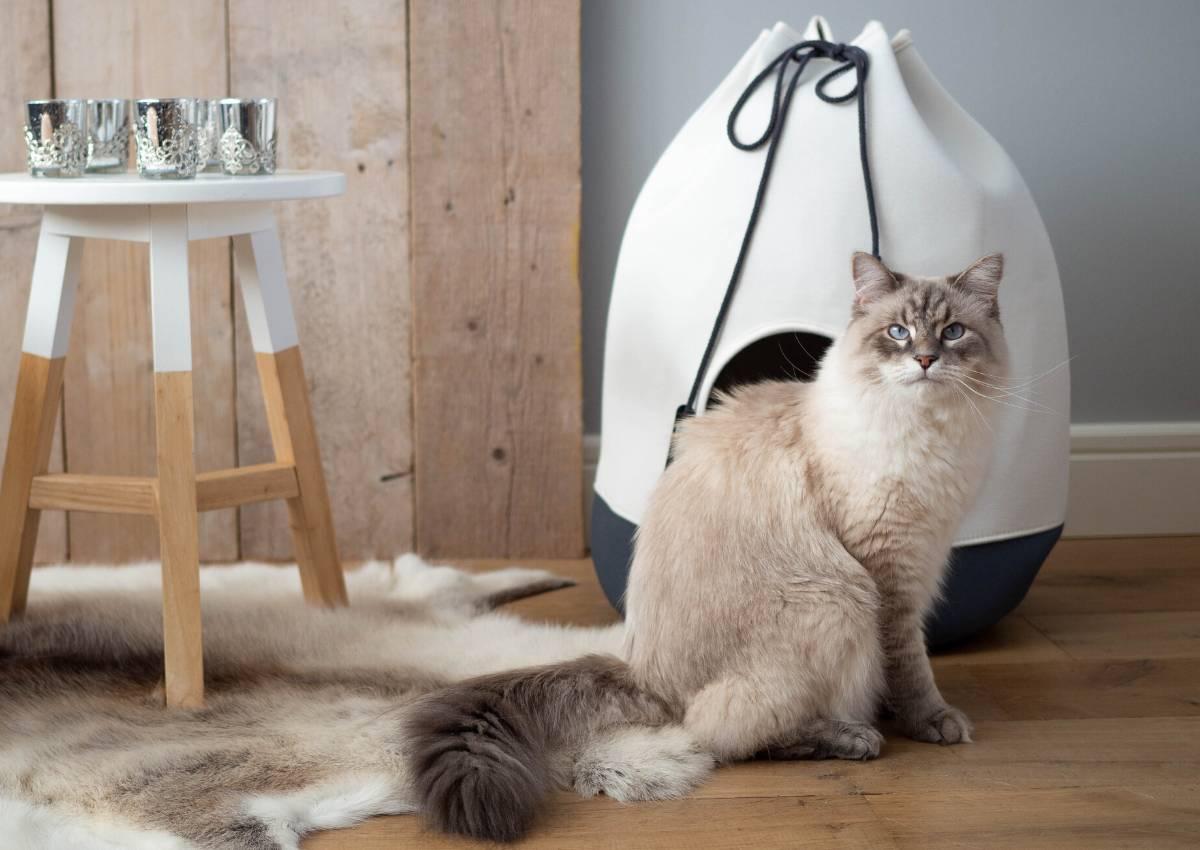 Perfecte schuilplaats voor huisdieren-1
