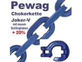 Forstkette 2,5m 4-Kant 8mm Pewag Joker V Schlinghaken XF8-G10 + Nadel -Bruchlast 12t