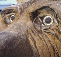 Carving Holzschnitzen Werkzeuge Zubehör + Material