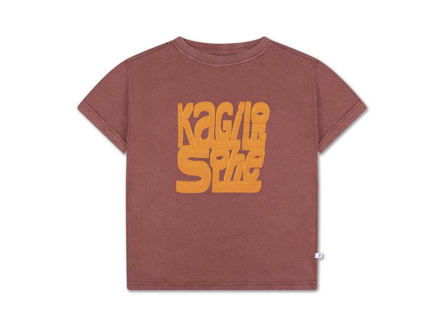 tee shirt washed brick