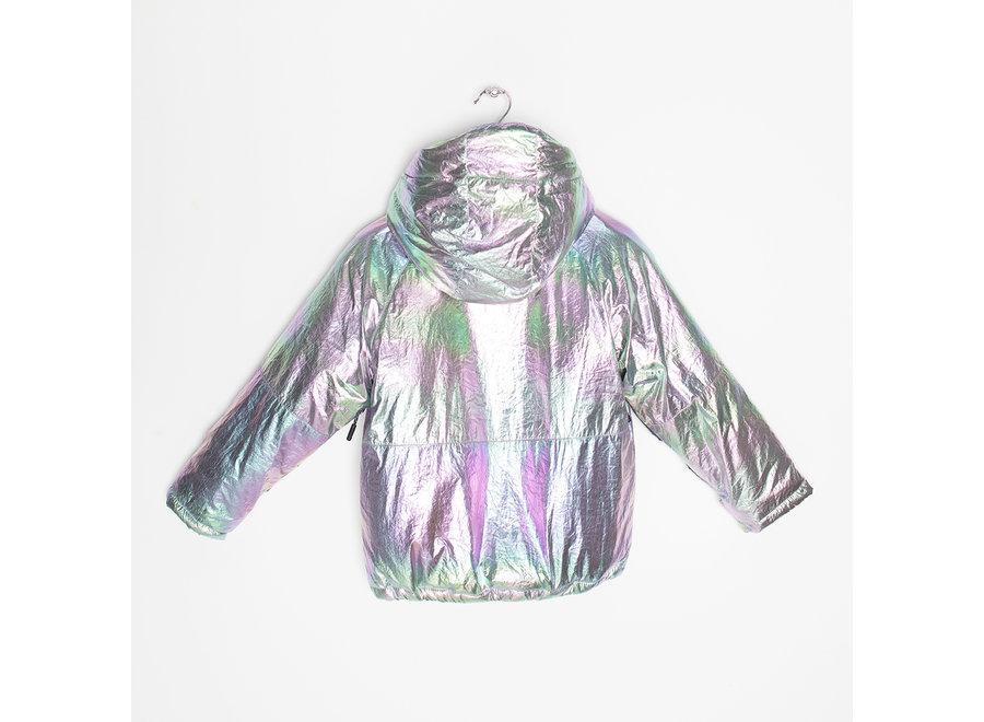 Pinguin March holographic