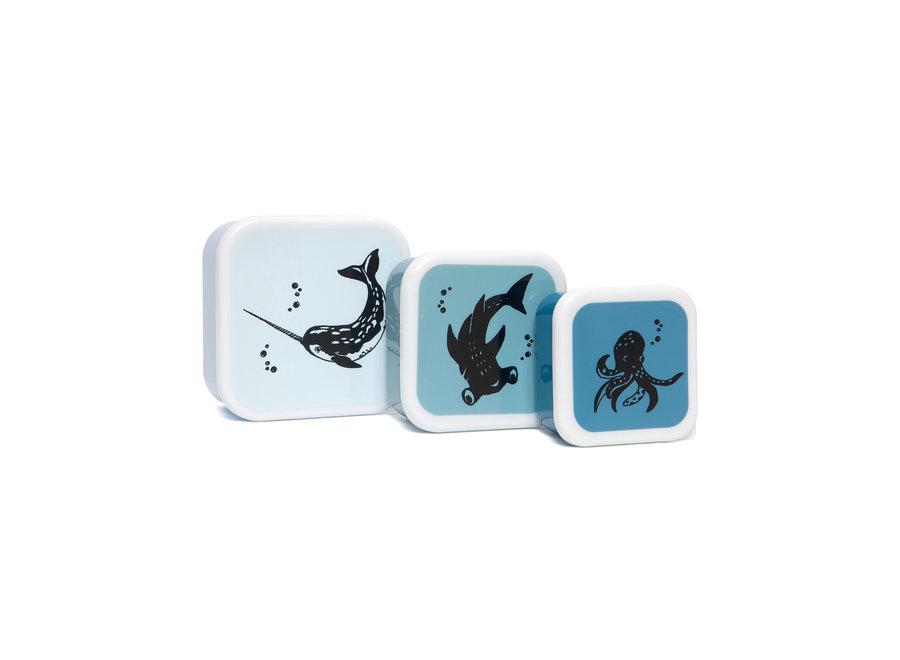 Lunchbox set sea animals