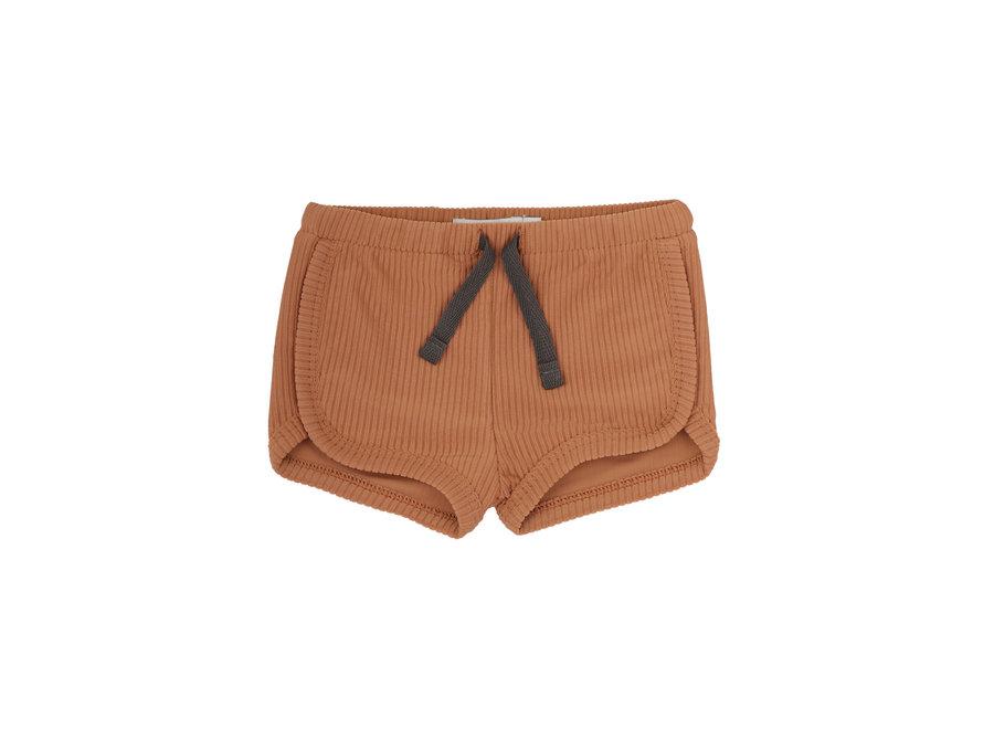 Swim shorts terra